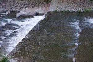 早川の流れ